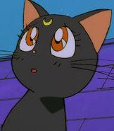 Luna in Sailor Moon R the Movie-0