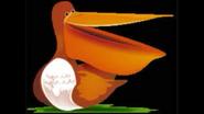 Safari Island Pelican