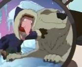 TWT Movie Polar Bear