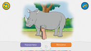 The Rhinoceros Is Big but the Elephant is Even Bigger