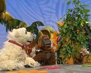 AnimalShow111-02