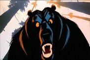 Bear ballot