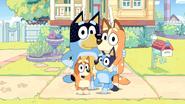 Bluey (Family)
