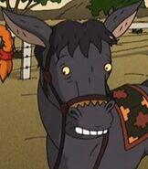 TWT Donkey