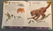 Extreme Animals Dictionary (11)