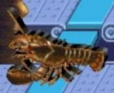 Lobster reader rabbit 1st grade
