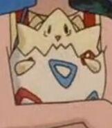 Togepi in Pokemon 3 the Movie