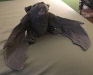 Venus the Vampire Bat