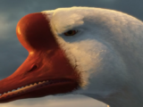 Golden Goose (Shrek)