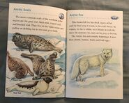 Animals of the Polar Regions (11)