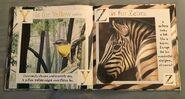 Gary Fleming's Wild Animals ABC (12)