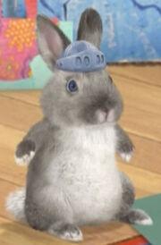 Ollie as Peter Rabbit