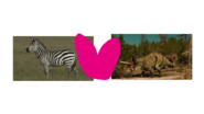 Plains Zebra and Triceratops