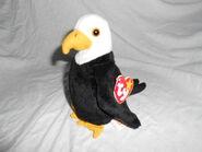 Baldy the Bald Eagle
