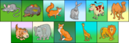 Mammals erinv