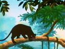 Jungle-cubs-volume01-bagheera03