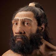 Neanderthalensis JG Recon Head CC 3qtr lt sq
