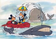 Whales-in-baby-animals-from-disney-discovery-series