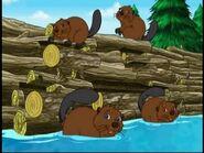 GDG Beavers