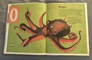 The Dictionary of Ordinary Extraordinary Animals (35)