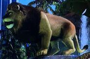 Asiatic Lion ZTX