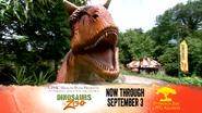 Pittsburgh Zoo Carnotaurus