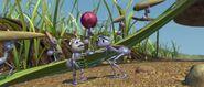Bugs-life-disneyscreencaps.com-318