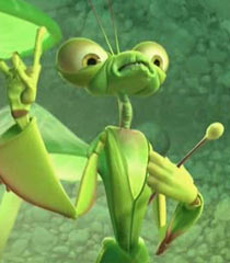 Manny the Praying Mantis
