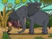 Rebeca the Elephant