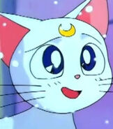 Artemis in Sailor Moon S the Movie