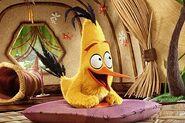 Chuck the Yellow Bird