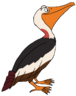 Guller the Pelican