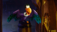 Monty the Vulture