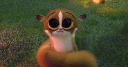 Mort (Madagascar)