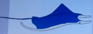 Batw-animal encyclopedia-manta-ray