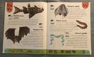 Weird Animals Dictionary (24)