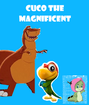 Cuco the magnificent