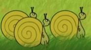 Funny-animals-2-snail