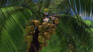 Madagascar-disneyscreencaps.com-7647