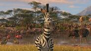 Madagascar2-disneyscreencaps.com-2820