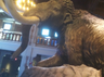 Toledo Zoo Mammoth
