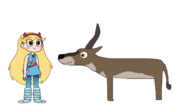 Star Meets Waterbuck
