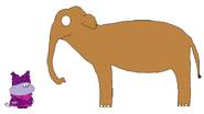 Chowder meets Asian Elephant
