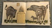 Gone Forever! An Alphabet of Extinct Animals (18)