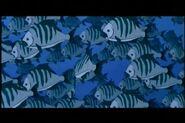 Help-im-a-fish-disneyscreencaps.com-2488