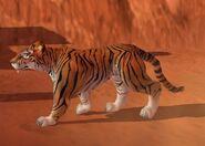 Tiger IC