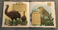Gone Forever! An Alphabet of Extinct Animals (10)