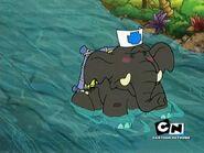 KND Elephant