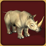 White Rhinoceros (Blue Fang)