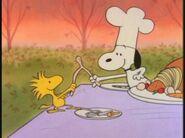 50877dbb08bc7e14953fa11518276af0--peanuts-thanksgiving-charlie-brown-thanksgiving